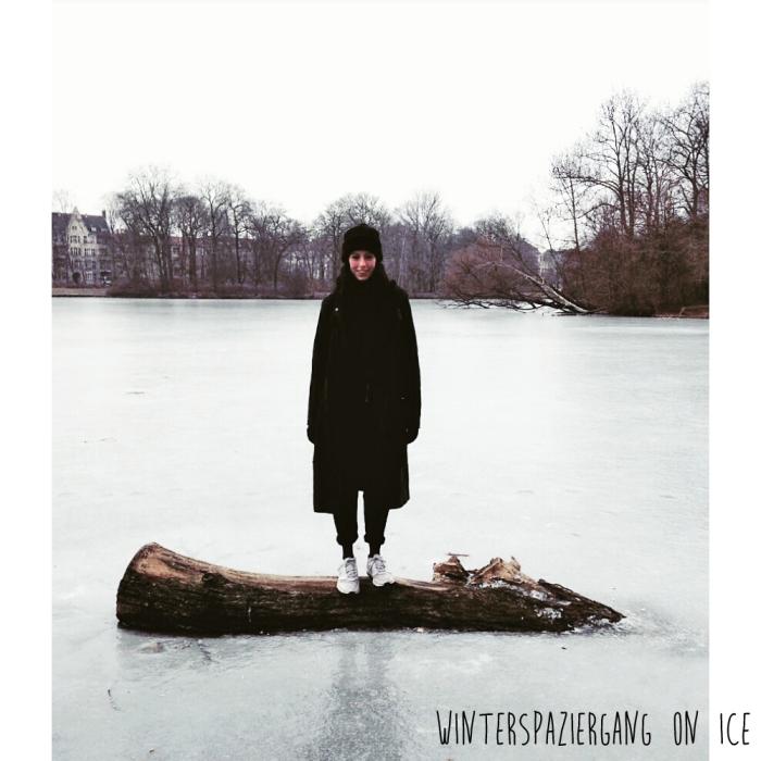 winterspaziergang-berlin-karpfenteich-treptower-park