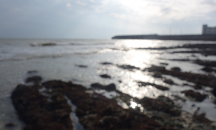 brighton-marina-seaside